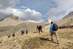 Mountain Homestays - Visit the oldest hamlet of Zanskar Valley, Ladakh