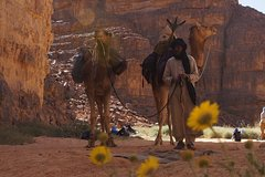 In the skin of a nomad TOUAREG