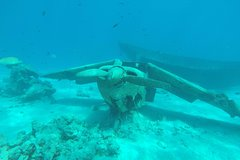 wrecks and tropical fishes snorkeling at 3:30pm