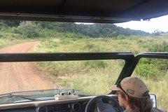 7 Day Kruger and Swaziland Safari