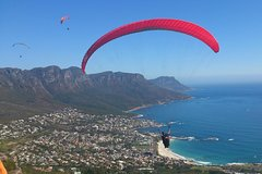 Cape Town 3-Day Attraction Tours Paragliding Cape Peninsula and Wine Tasting