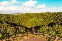 Beautiful South Tour - Mauritius Island *(All-Inclusive)