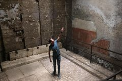 Palatine Museum, Domus Transitoria & Neros Cryptoporticus Tour with PhD