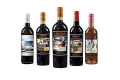 Wine tasting of the Fabrizio Pratesi winery