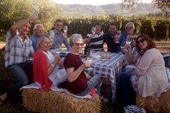 Wine Safaris to 'Amore' Abruzzo