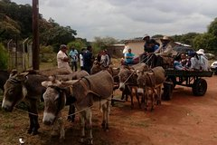 Day Tours from Gaborone (Manyana Village Visit)