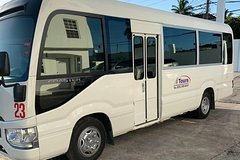 Montego Bay Private Bus for 25 persons