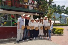 Coffee Tour at the Finca del Café