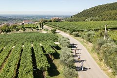 Valpolicella e-bike Harvest