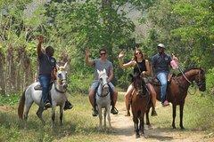 Eco-Tour on Horseback