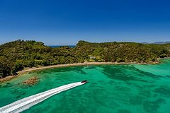 Bay of Islands Paihia to Auckland One-Way Tour Transfer