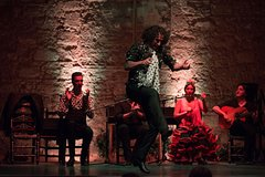 Imagen Jerez Flamenco Day Trip from Malaga