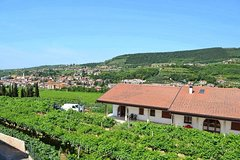 Valpolicella - The wine paradise