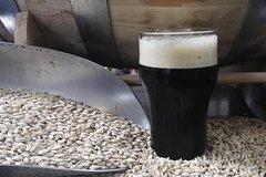 Discover the Israeli craft beer scene - Beer Tasting