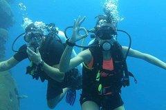 Scuba Dive In Fiji