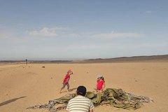 Moon Landscape and Welwitschia Touri