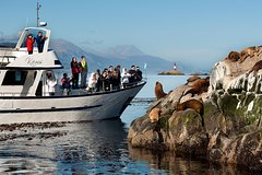 Beagle Channel navigation with mini trekking by Patagonia Explorer
