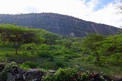 Eco - Walk The Royal Road to Cabrera-
