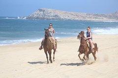 Cabo white sand horseback adventure
