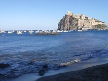 Ischia Private Day Trip from Sorrento with Local Guide and Driver