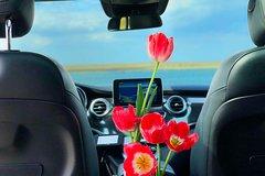 Exclusive Private Tours to Keukenhof / Tulip-garden, Dutch flower fields 2020