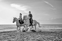 Private horseback ride on the beach in Marina di Grosseto