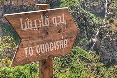 The Secrets Of The Valley! (Qadisha Valley - Bsharri - Cedars of God)