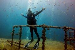 Bayahibe Diving