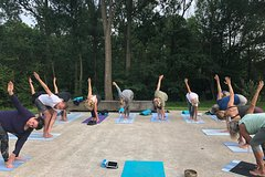 Champ - Yoga class by the water in small groups at Dolphin Wellness
