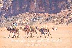 Camel Ride to Lawrence Spring   2 hours