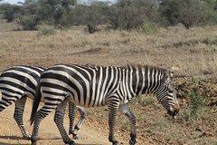 3 Days Serengeti and Ngorongoro Crater Lodge Tour