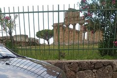 Paestum Temples, Bufala´s mozzarella, Wine tasting Cilento (pick up Amalfi