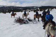 Horseback Riding Full Day in San Carlos de Bariloche Argentina
