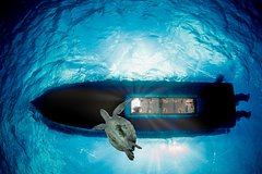 2 hour Reef & Sunset cruise by Glass Bottom Boat to Klein Bonaire