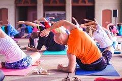 Dynamic yoga class at Yoga-Pilates Rotterdam