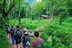 Bai Dinh Pagoda - Trang An - Cuc Phuong National Park