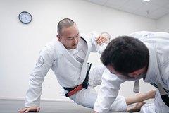 Challenging Hapkido at Huk Tti Netherlands