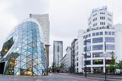 City bustour Eindhoven with live guide: discover Philips,Van Gogh,design and technic