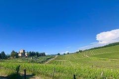 Wine Experience In Chianti Hills & Radda