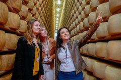 Private Modena Cultural Gems Half-Day Trip: Tastings & Highlights with