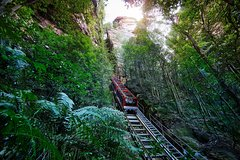 Private Blue Mountain Tour with Scenic World Rides, Jenolan Cave & River Cruise