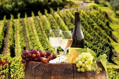 Private Full-day Prosecco Experience with an Expert from Venice/Treviso