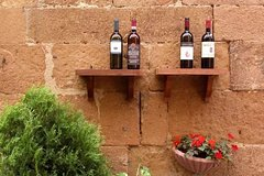 Day trip Brunello wine tours from Florence