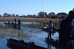 full day Mokoro excursion with Travel Creations Botswana