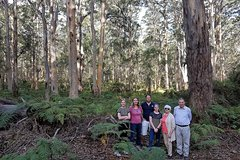 Scenic Nature, Food, Wine Tour of Margaret River
