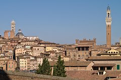 Private Transfer: Fiumicino Airport (FCO) to Siena and vice versa