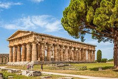 Visit of Paestum with the guide