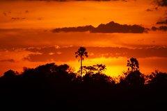 16 Days Botswana's Finest Safari Experience