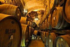 Montalcino & Montepulciano - Ultimate VIP Brunello, Rosso e Nobile Wine