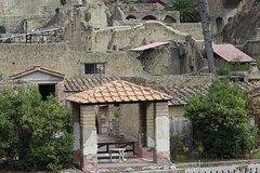Guided Tour With Transfer From Naples To The Archaeological Site Of Hercula